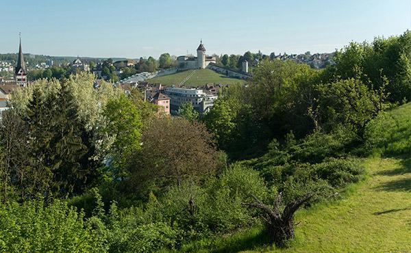 Grundstück bewerten schaffhausen